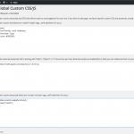 Custom CSS/JS Plugin